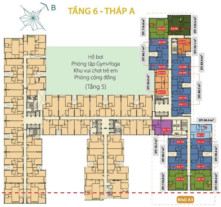 tang-6-thegoldview