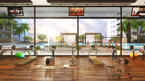 gym-the-gold-view